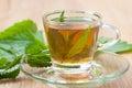 Herbal tea with nettle blossom inside teacup, stinging nettle tea