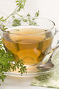 Herbal tea. Wine rue. Stock Photo