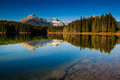 Herbert lake scenic on the icefields parkway banff national park Stock Photography