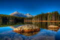 Herbert lake scenic on the icefields parkway banff national park Royalty Free Stock Photos