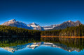 Herbert lake scenic on the icefields parkway banff national park Stock Photos
