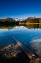 Herbert lake scenic on the icefields parkway banff national park Royalty Free Stock Photography