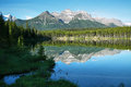 Herbert lake view banff national park canada Royalty Free Stock Images