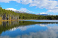 Herbert lake whitehorn mountain banff national park alberta canada Royalty Free Stock Image