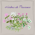Herbes de Provence.