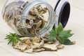 Herbs and dried mushrooms boletus Stock Photos