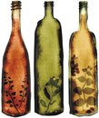 Herbs flavored vinegar bottles cooking watercolor Stock Images