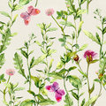 Herbs, flowers, butterflies, meadow grass. Repeated floral pattern. Watercolour Royalty Free Stock Photo
