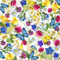 Herbs and flowers with butterfly background. watercolor illustration Royalty Free Stock Photo