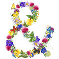 Herbs and flowers wreath with butterfly background. watercolor illustration Royalty Free Stock Photo