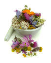 Herbs health from nature alternative medicine Royalty Free Stock Image