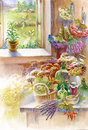 Herbs at home watercolor beautiful Royalty Free Stock Photo