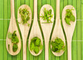 Herbs on kitchen spoons Royalty Free Stock Images