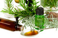 Herbs for medicine Royalty Free Stock Photo
