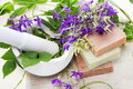 Herbs in Mortar with Soap Royalty Free Stock Photography