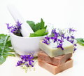 Herbs in Mortar with Soap Royalty Free Stock Images