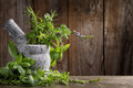 Herbs in mortar on wooden background Royalty Free Stock Photography