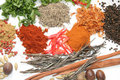 Herbs and spices Royalty Free Stock Photography