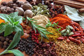 Herbs and spices composition cooking ingredients on a ceramic tabletop Royalty Free Stock Image