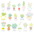 Herbs and spices set in pots with flowers illustration Royalty Free Stock Photography
