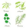 Herbs. Tarragon, arugula, cilantro or coriander, rosemary.