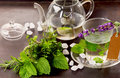 Herbs tisane and mint tea cup still life Royalty Free Stock Photo