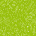 Herbs and wild flowers seamless pattern.