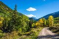 Herbst in colorado Stockfoto