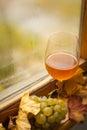 Herbstweißwein Stockbild
