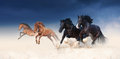 A herd of black and red horses galloping in the sand against the background of a stormy sky