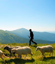 Herdsman in the mountains Royalty Free Stock Photo