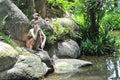 Hermit statue Stock Photo