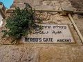 Herod's Gate ascent name sign in Jerusalem, Israel Royalty Free Stock Photo