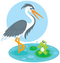 Heron and frog Royalty Free Stock Photo