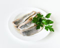 Herring fillet pieces of salted in oil on a white plate with parsley Royalty Free Stock Image