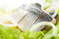 Herring with onion Royalty Free Stock Photography