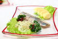Herring with vegetables Royalty Free Stock Photo