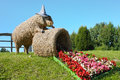Het beeldhouwwerk en de begoniabloemen van het strovarken Royalty-vrije Stock Fotografie
