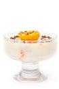 Het dessert van pannacotta Royalty-vrije Stock Foto's