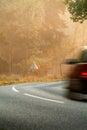 Het drijven van de auto langs op een bosweg tijdens daling Royalty-vrije Stock Afbeeldingen