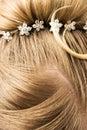 Het haar van de vrouw met haarspelden Stock Foto