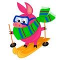 Het karakter van het varken skiing.isolated. Stock Afbeelding