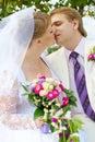 Het kussen van de bruid en van de bruidegom onder de boom Royalty-vrije Stock Foto