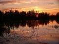 Het landschap van de noordelijke aard forest sunset over ri Stock Afbeelding