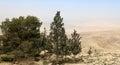 Het landschap van de woestijnberg luchtmening jordanië midden oosten Stock Fotografie