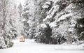 Het Off-road berijden op de winter bosweg Royalty-vrije Stock Foto