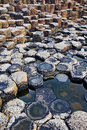 The hexagonal basalt slabs of giants causeway antrim coastline northern ireland is most popular tourist Royalty Free Stock Photos