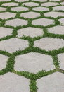 Hexagonal tiles with green grass between them Royalty Free Stock Images