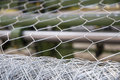 Hexagonal Wire Mesh Royalty Free Stock Photo