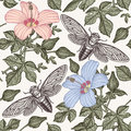 Hibiscus cicadas. Flowers mallow insects fauna. Seamless textile background. Drawing engraving. Freehand isolated realistic. Royalty Free Stock Photo